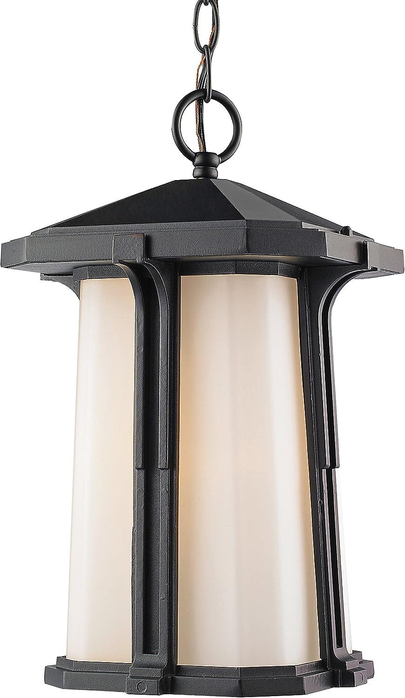 Direct Long Beach Mall store Z-Lite 542CHM-BK 1 Outdoor Chain Black Light