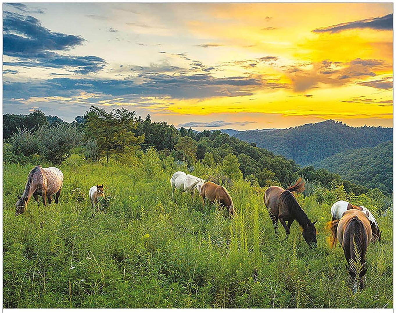 望むクライマックス吐き出すSimply Calendar アメリカ南東部の風景 2020 軽量マンスリーウォールカレンダー – 10.5インチ x 18インチ (オープン)