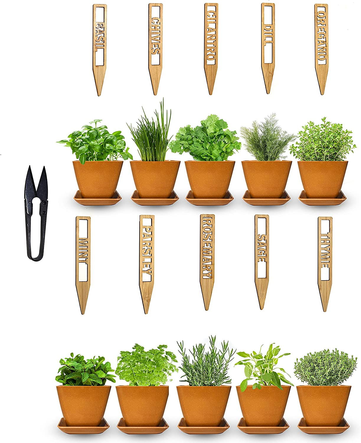 Garden Of Eden 10 Herb Seed Bamboo Pots High material Plant w Kit Max 86% OFF Labe