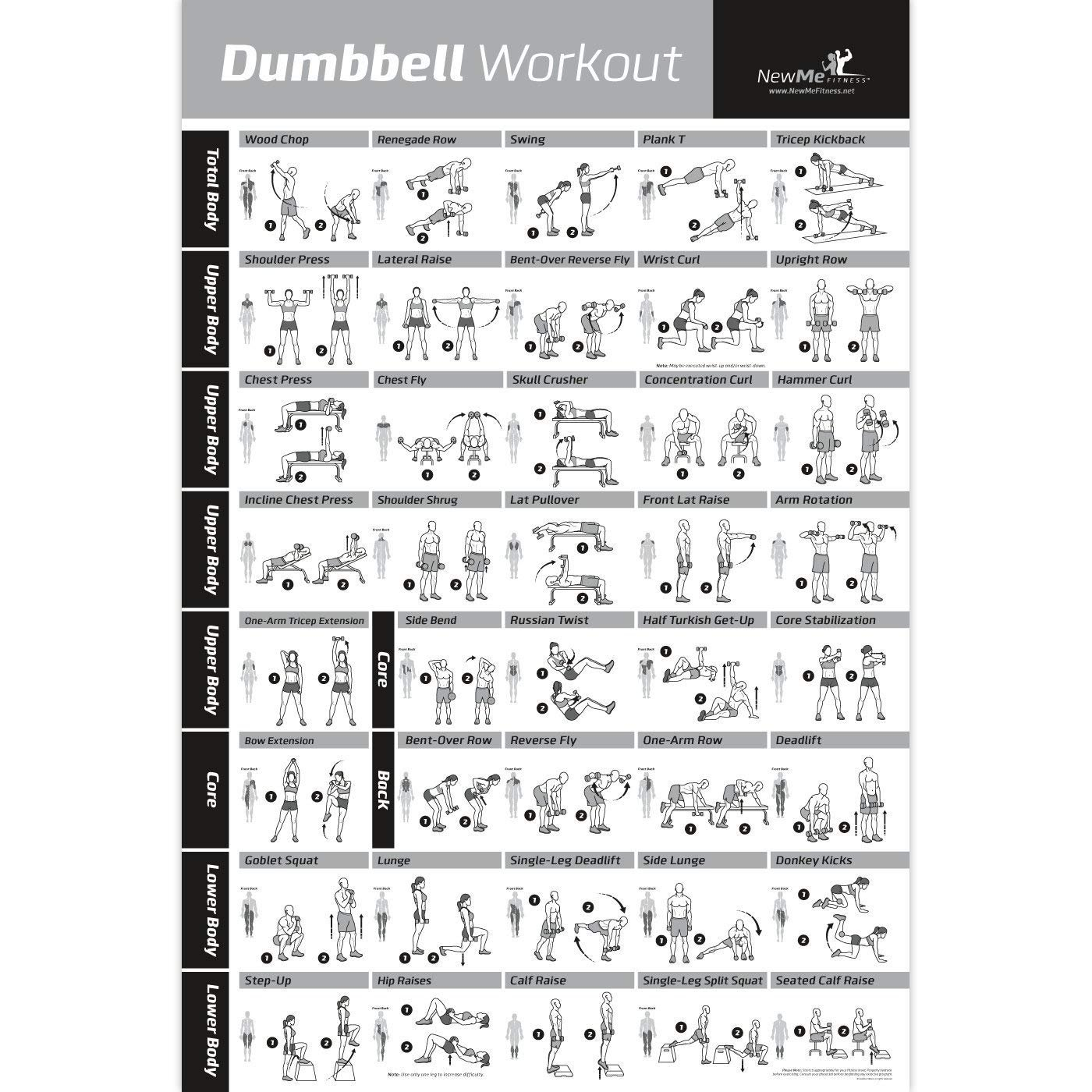 Newme Fitness Dumbbell Workout Exercise Poster 20x30 Inch Multicolour Amazon In Sports Fitness Outdoors