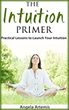 The Intuition Primer: Practical Lessons to Launch Your Intuition