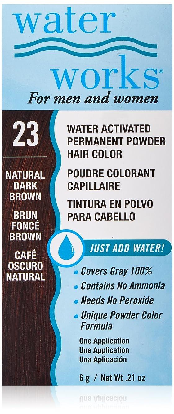広がり抗生物質回復するWater Works 水道パーマネントヘアカラーパウダー #23ナチュラルダークブラウン