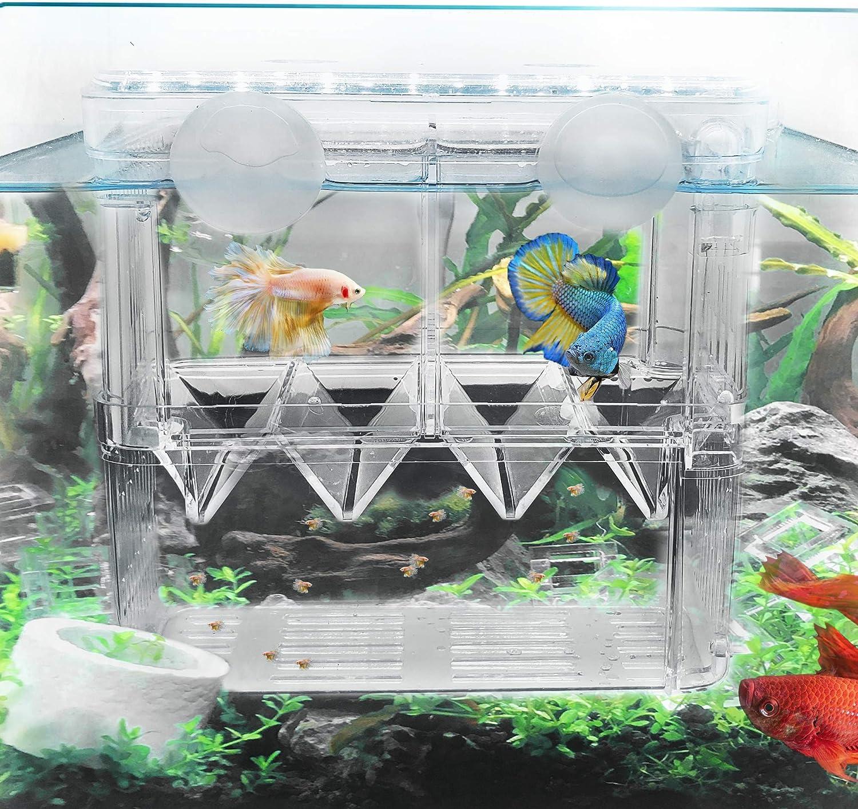 STARROAD-TIM Fish Credence Breeding Box Aquarium w Acrylic Tank Incubator Minneapolis Mall