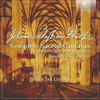 J.S. Bach: Complete Sacred Cantatas Vol. 06, BWV 101-120