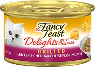 Best cat with cheese Reviews
