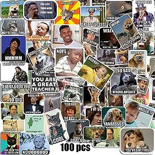 Meme Stickers 100PCS
