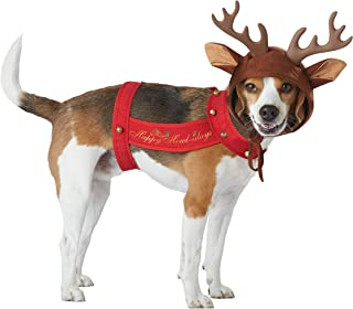 CALIFORNIA COSTUME COLLECTIONS PET20155 Apparel for Pets, Large