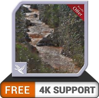 floresta de cachoeira chuvosa grátis HD - tema chuvoso de paz completa em seus dispositivos hdr 8k 4k tv e fogo como papel de parede e tema de mediação e paz