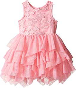 Embroidered Ballerina Dress (Infant)