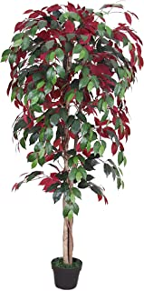 AMERIQUE Gorgeous 5' Ficus Capensia Tree Artificial Silk Plant, with Nursery Plastic Pot, Feel Real Technology, Super Quality, Green & Burgundy
