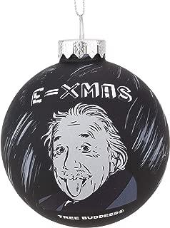 Tree Buddees Physicist Albert Einstein E=Xmas Glass Christmas Ornament