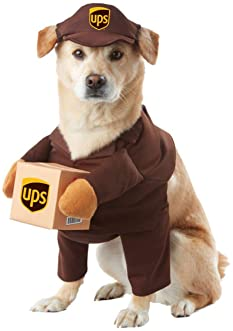 Weiner Dog Halloween Costumes.Explore Costumes For Dachshund Dogs Amazon Com