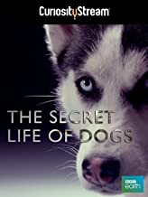 Best secret life of dogs documentary Reviews