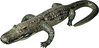 Jet Creations Inflatable Gator 49 inch Long Safari Great for Pool, Party Decoration, an-Gator