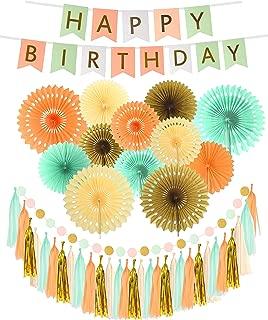 Pink Green White Happy Birthday Wall Banner| Mint Gold Glitter Peach Cream Paper Fans Birthday Decorations | Happy Birthday Decorations