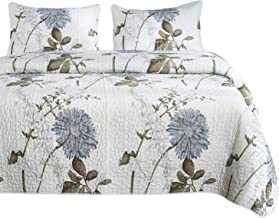 Wake In Cloud - Floral Quilt Set, Botanical Flowers Pattern Printed, 100% Cotton Fabric with Soft Microfiber Inner Fill Bedspread Coverlet Bedding (3pcs, Queen Size)