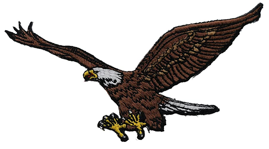 Bald Eagle Flying with Open Wings 4 1/2 x 2 1/2 Inch Patch PPMT0424