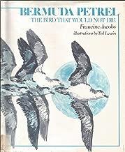 Bermuda Petrel: The Bird That Would Not Die