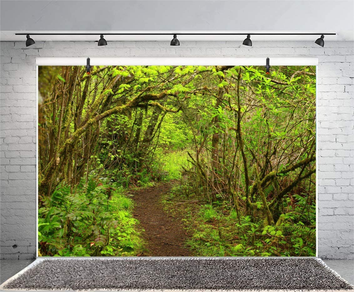 12x8FT Greenery Spring Forest Backdrop Secret Garden Enchanted Woodland Summer Camp Adventure Hiking Tropic Jungle ar Ancient Bush Photo Background Nature Park Portrait Studio Vinyl Prop
