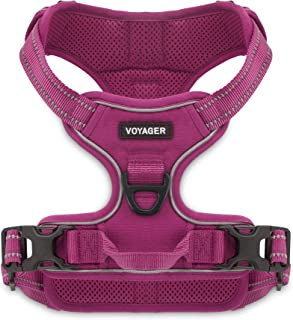 Voyager by Best Pet Supplies -Dual-Attachment No-Pull Adjustable Harness with 3M Reflective Technology, (Fuchsia, X-Small)