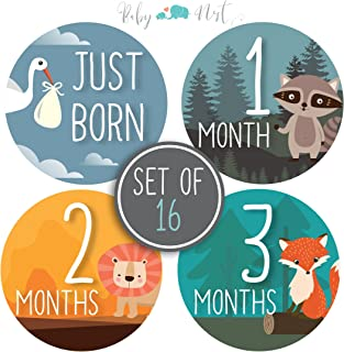 Baby Milestone Stickers by Baby Nest Designs - Set of 16 Baby Monthly Stickers. Cute Woodland Animals Each Month Stickers for Baby Boy and Baby Girl - Newborn Photography Props, Fun Baby Shower Gifts