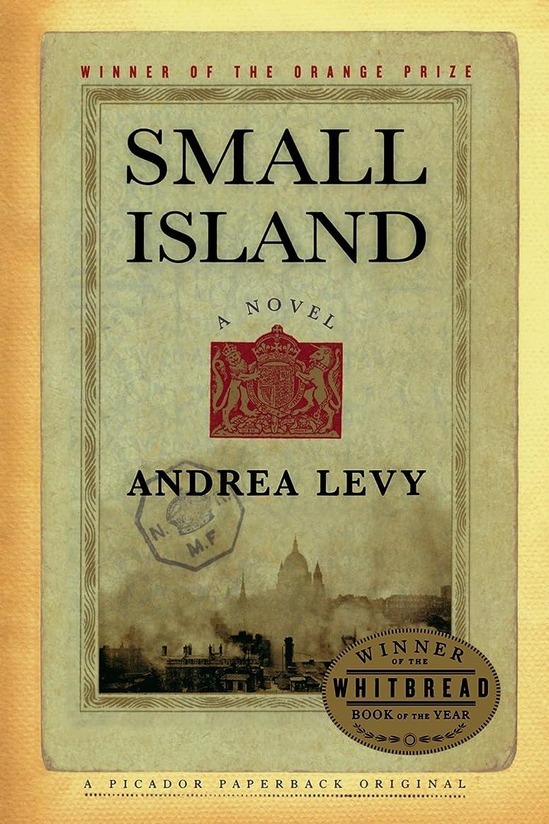 意識れんが下るSmall Island