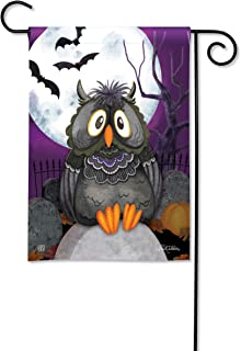 BreezeArt Studio M Moonlight Owl Fall Halloween Garden Flag - Premium Quality, 12.5 x 18 Inches