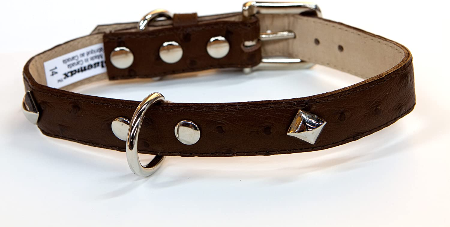 blueemax Genuine Leather Ostrich Print Dog Collar with Pyramid Stud, 5 8Inch by 8Inch, Brown