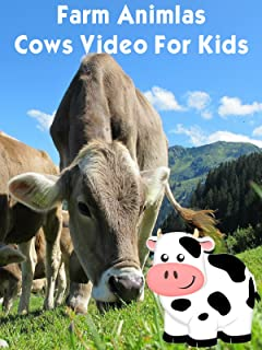 Farm Animals - Cows Video For Kids