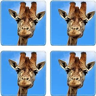 MSD Natural Rubber Square Coasters Set of 4 Design for Giraffe Africa Wildlife Mammal Safari Animal Nature Neck Tall Wild Zoo Afri