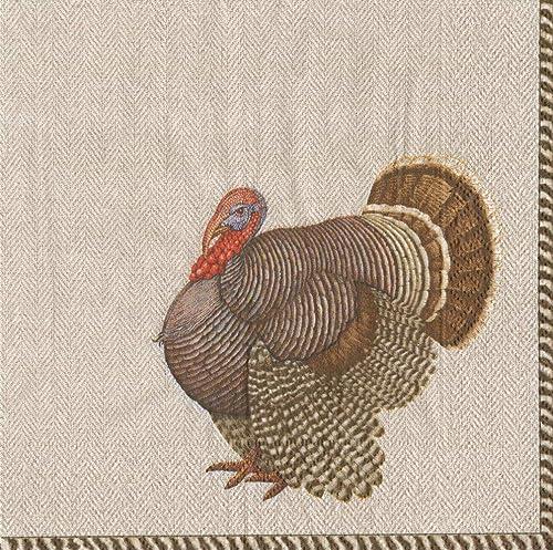 Serviettes fête Entertaining Fall Thanksgiving Vacances fête Thomas Turquie Pack of 40 multiCouleure