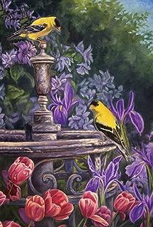 Toland Home Garden Gold Finch Birdbath 28 x 40 Inch Decorative Spring Summer Flower Yellow Bird House Flag