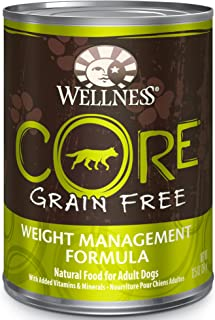 Wellness CORE Natural Grain Free Wet Canned Dog Food