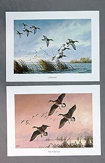 Vintage David Maass Wilderness Wings Print Portfolio 76