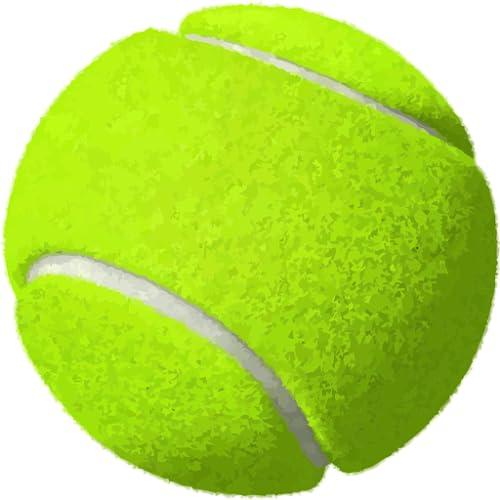 Tennis Live Scores