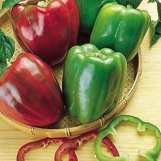 Burpee Heriloom 'California Wonder' Sweet Pepper - 300 seeds