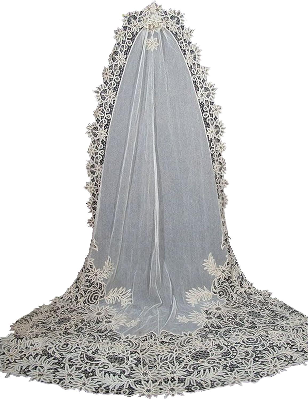 Newdeve 2.5M 1T White Wedding Dress Veils Lace Edge Free Comb