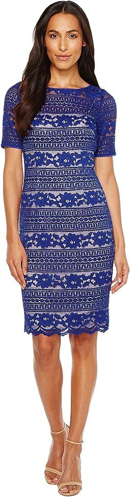 Corded Stripe Lace Dress