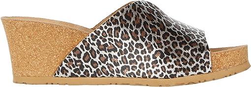 Brown Panthera