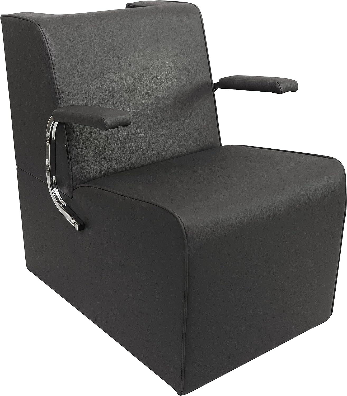 Chromium Professional Platform Dryer Chair G by PureSana 2037 Oakland Mall Store