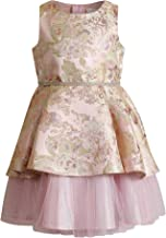 Youngland Girls Special Occasion Holiday Dress