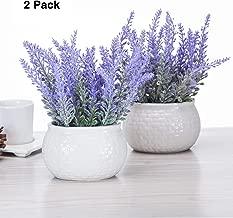 chuangxindaye Artificial Mini Potted Flowers Plant Lavender for Home Decor Party Wedding Garden Office Patio Decoration (Ceramics 2set)