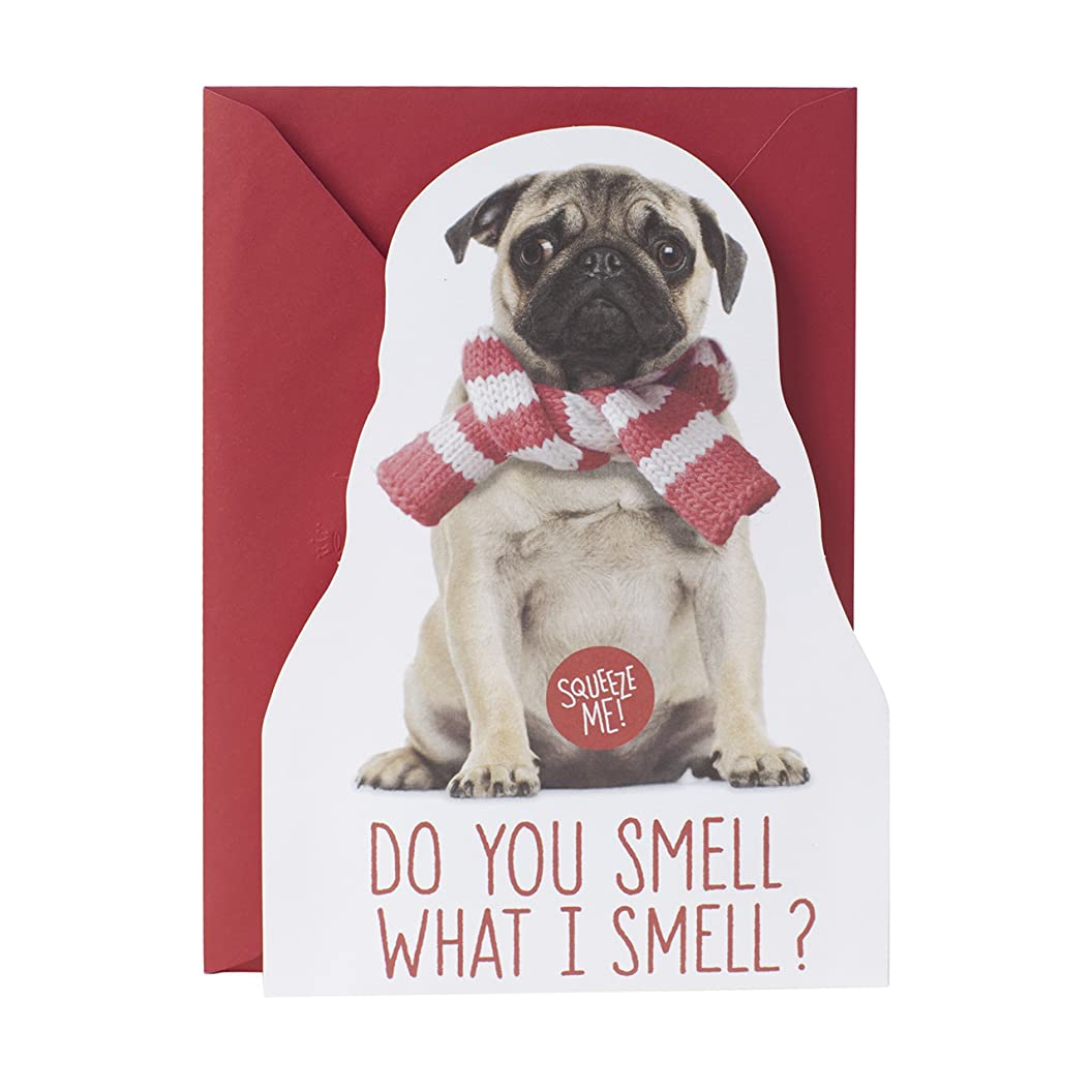 Hallmark Christmas Funny Card with Sound (Farting Pug) gvzcrhjrbge36
