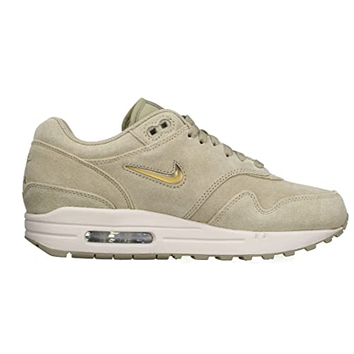 fddb4512b16900 Nike Men s Air Max 1 Premium Running Shoe