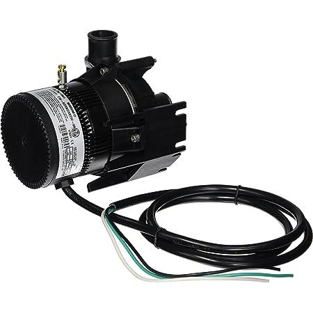 Laing E10-NSTN1W-19 Spa Circulation Pump