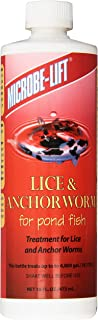 anchor worm treatment