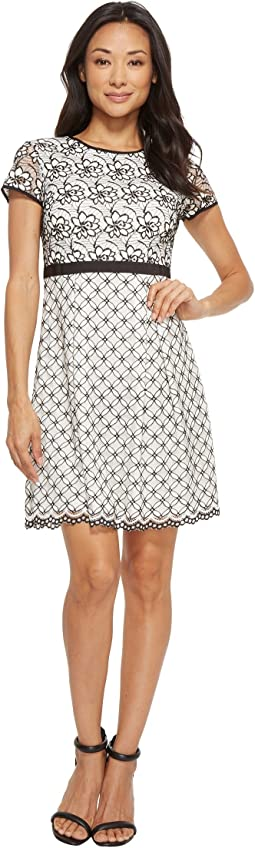 Adrianna Papell - Petite Twin Lace Fit & Flare Dress