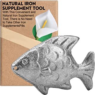 Iron Supplement Tool for People With Anemia Caused by Iron Deficiency, The Original Iron Supplement, Simple Iron Added in ...
