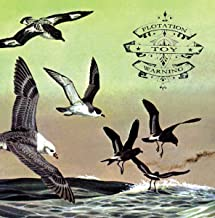 Bluffer's Guide To The Flight Deck Dl Card/2 Bonus Tracks