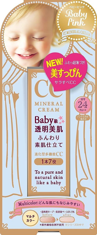お祝い表面的な一般化するベビーピンク CCクリーム 20G